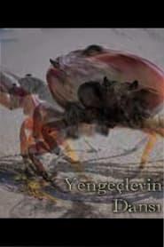 Dance of the Crabs (2021) torrent