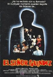 El Señor Galíndez (1984)