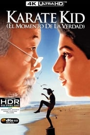 Karate Kid (1984) | The Karate Kid | Karate Kid, el momento de la verdad