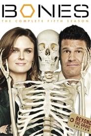 Bones - Specials Season 5