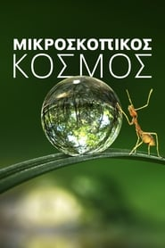 Tiny World / Μικροσκοπικός κόσμος (2020) online ελληνικοί υπότιτλοι