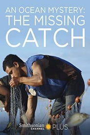An Ocean Mystery: The Missing Catch