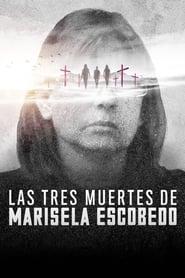 Poster The Three Deaths of Marisela Escobedo 2020