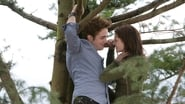 Twilight, chapitre 1 : Fascination images