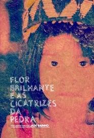 Poster Flor Brilhante e as Cicatrizes da Pedra 2013