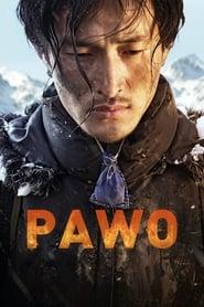 Pawo (2016) Online Cały Film CDA