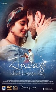 Zindagi Kitni Haseen Hay 2016 Pakistani Movie Download HD 720p