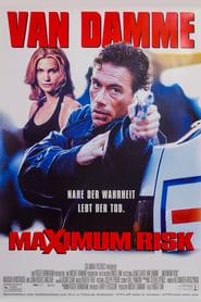 Filmcover von Maximum Risk
