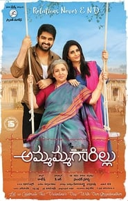 Ammammagarillu (2018) Hindi 720p HDRip x264 Download