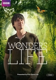 Wonders of Life 2013