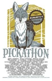 Yo la Tengo Pickathon