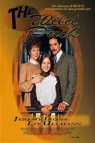 The Wild Duck (1984) Netflix HD 1080p