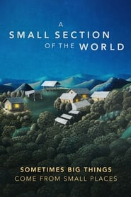 Poster for A Small Section of the World