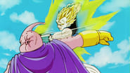 I Will Deal with the Majin! Vegeta's Final Mortal Combat!