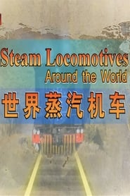 世界蒸汽机车 2011