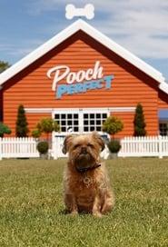Pooch Perfect Season 1 Episode 6