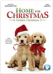 A Golden Christmas 3 poster