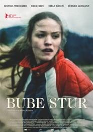 Bube Stur (2015) Zalukaj Online