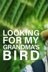 Looking For My Grandma's Bird