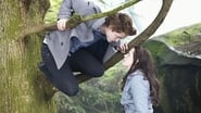 Image for movie Twilight (2008)