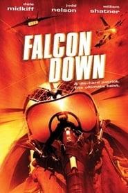 Falcon Down – Todesflug ins Eismeer (2001)