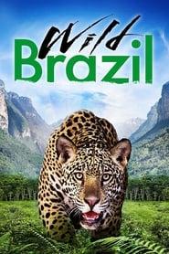 Wild Brazil 2014