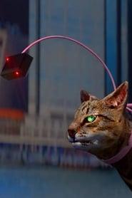 Catwalker and the Catwalker's Intern (2018)