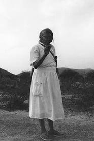 Zapata's Path 2001