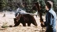 Grizzli, le monstre de la forêt images