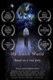 My Amish World