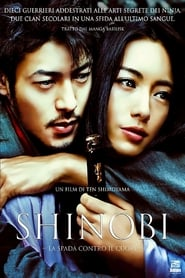 Shinobi 2005