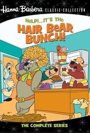 Help!… It's the Hair Bear Bunch!