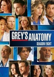 Chirurdzy: Sezon 8