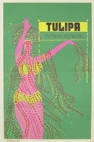 Tulipa 1967