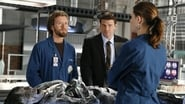 Bones Season 1 Episode 6 : The Man in the Wall