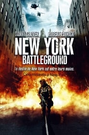 New York Battleground 2010