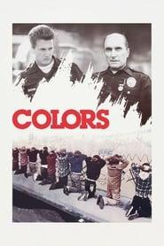 ფერები / Colors