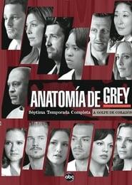 Anatomía según Grey: Temporada 7