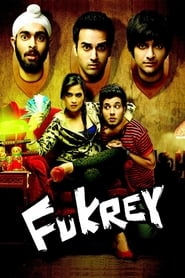 Fukrey 2013 Hindi Movie BluRay 300mb 480p 1.2GB 720p 4GB 11GB 14GB 1080p