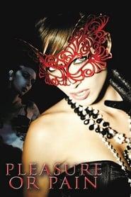 Poster Pleasure or Pain 2013