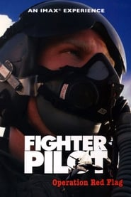 Fighter Pilot: Operation Red Flag (2004)