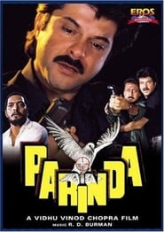 Parinda 1989 Hindi Movie AMZN WebRip 400mb 480p 1.3GB 720p 4GB 8GB 1080p