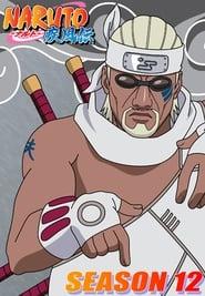 Naruto Shippuden 12º Temporada (2007) Blu-Ray 720p Download Torrent Legendado