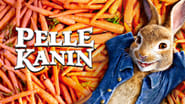 Wallpaper Peter Rabbit