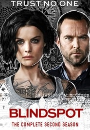 Blindspot 2. Sezon
