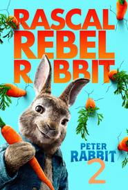 Зайчето Питър 2 (2020)