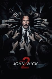 John Wick: Chapter 2 2017 Dual Audio Hindi-English
