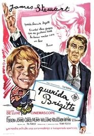 Dear Brigitte