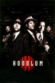 Poster Hoodlum 1997