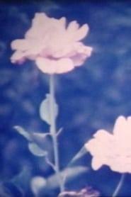花が咲いたら movie